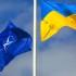Как Украине договариваться с Венгрией