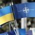 Украина и мир: изменения на фоне последних событий