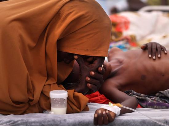 Голод в Африці: у чому причини?