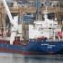 Крим: Підсумки моніторингу порушення санкцій і режиму окупованої території в січні 2017 року